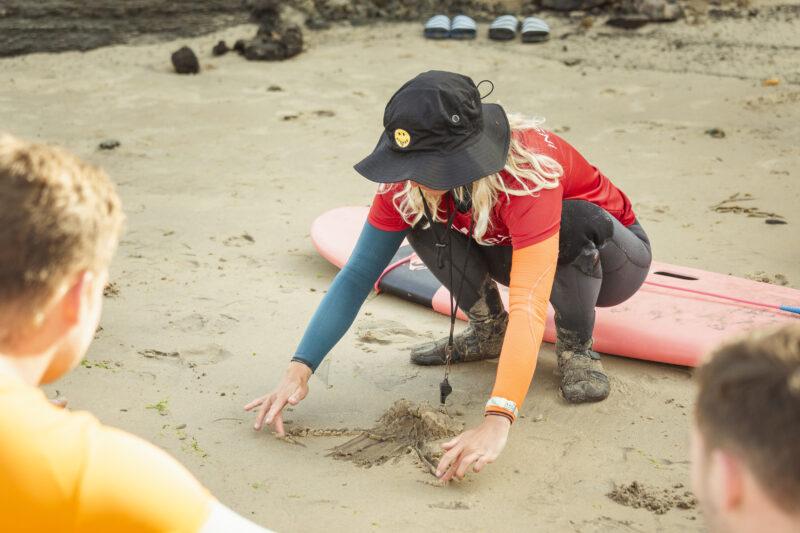 Surfinstructeur cursus: ga aan de slag met jouw droombaan